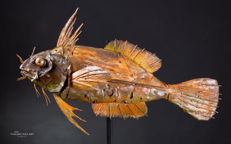 L'arte del Riciclo, sculture, legno, mare, design, materiali riciclati, pesci, arte moderna, tuscany fish, by marco ghizzani,WILDANIMALARTIST,RECYCLING,HOMEDECOR,SCULPTURE fish ,LIVORNO,FISH ART ,SHOPPING,VENDITA,RICICLO CREATIVO,METAL ART,TOSCANA,RICICLO 100%,pesce d'autore,sculture da parete pesci,scultura d'arredo,metal sculpture,steampunk